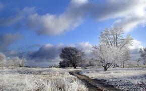 Обои зима, дорога, поле, деревья