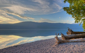 Картинка лес, деревья, озеро, берег, гора, Glacier National Park, Montana, Lake McDonald