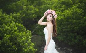 Картинка взгляд, цветы, фон, розы, платье, азиатка