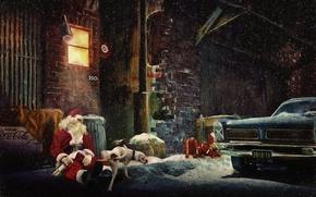 Обои новый год, дед мороз, санта, собака