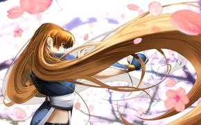 Картинка сакура, рыжая, цветение, длинные волосы, Kasumi, Dead or Alive, DoA Girls