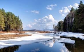 Обои зима, лес, небо, вода, облака, снег, пейзаж, природа, озеро, пруд, обои, wallpaper, ёлки