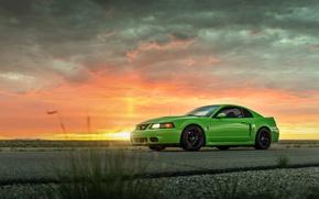 Картинка Mustang, Ford, Cobra, Road, SVT, Suset