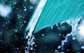 Картинка вода, макро, фото, дождь, зонт