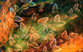 Обои рисунок, листва, абстракция