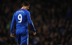 Картинка синий, номер, цифры, цифра, номера, стадионы, торрес 2011 torres 2011 photos