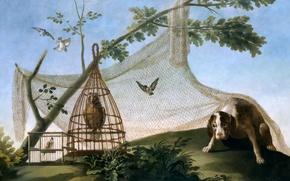 Обои собака, сеть, жанровая, картина, Охота с Претензией, Франсиско Гойя, птица, клетка
