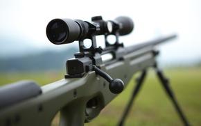 Картинка оружие, оптика, винтовка, снайперская, awp, awm, Arctic Warfare Magnum