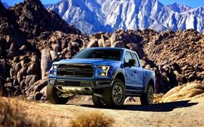 Картинка Ford, форд, Raptor, раптор, F-150, 2016