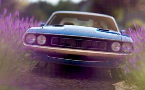 Картинка рендеринг, фон, Dodge, Challenger