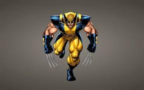 Картинка Росомаха, X-Men, wolverine, комикс, Marvel Comics, Люди Икс