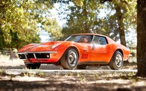 Картинка деревья, оранжевый, Corvette, Chevrolet, 1969, шевроле, классика, передок, корвет, стингрэй, Stingray