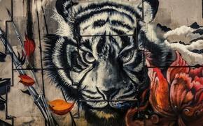 Обои тигр, краски, граффити, стена
