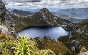 Картинка lake, hills, plants