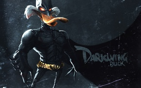 Картинка mask, suit, Dark Knight, Duck, darkwing