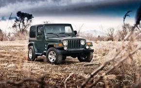 Картинка Jeep wrangler sahara, машина, фон
