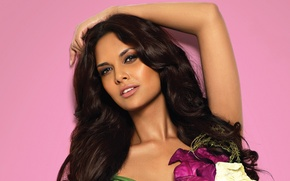 Картинка девушка, актриса, красавица, girl, sexy, beautiful, model, pretty, beauty, face, brunette, pose, cute, indian, actress, …