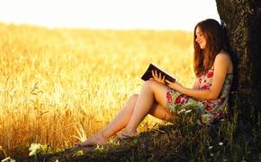 Картинка пшеница, поле, девушка, дерево, книга, колосья, чтение