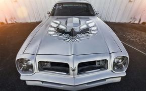 Картинка Pontiac, Firebird, Trans Am, 1973