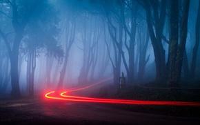 Картинка дорога, пейзаж, ночь, огни