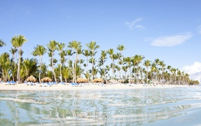 Картинка пляж, вода, прозрачность, пальмы, океан