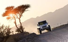 Картинка солнце, закат, Mercedes-Benz, мерседес, AMG, амг, G-Class, 6x6, W463, 2015