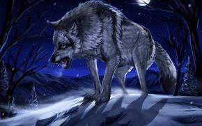 Картинка зима, лес, снег, ночь, луна, рисунок, волк, арт, оскал
