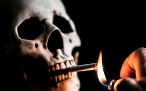 Обои череп, зажигалка, сигарета