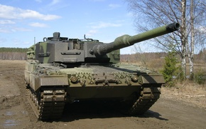Картинка леопард, танк, берёзы