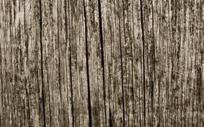 Картинка трещины, дерево, доска