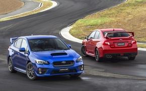 Обои синий, красный, фон, Subaru, Impreza, WRX, лицо сзади, STI, Импреза, передок, Судабу