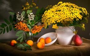 Картинка цветы, ветки, ягоды, тарелка, ваза, фрукты, натюрморт, персик, рябина, абрикосы, пижма