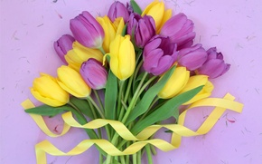 Картинка цветы, flowers, лента, букет, yellow, purple, tulips, тюльпаны, fresh