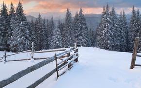 Обои лес, снег, деревья, горы, следы, забор, елки, Зима, вечер