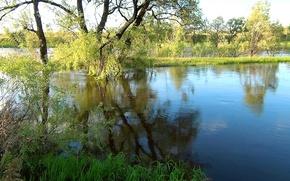 Картинка вода, облака, деревья, река, остров, Лето, river, trees, clouds, island, Summer