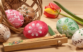 Картинка цветок, тюльпан, яйца, пасха, крашенки