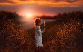 Картинка поле, закат, девочка, травинка