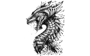 Обои dragon, head, teeth, scales