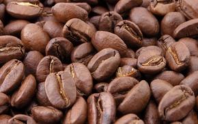 Обои Зерна, Кофе, Макро