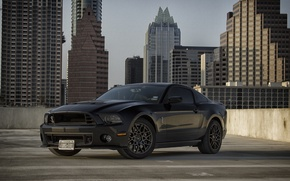 Картинка Mustang, Ford, Shelby, GT500, Muscle, Car, Black, 2014