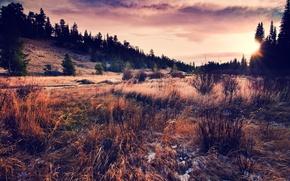 Картинка небо, трава, солнце, облака, пейзаж, закат, природа, холмы, вечер