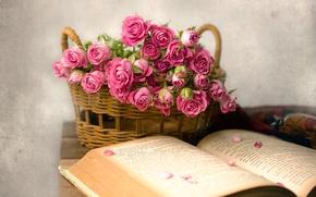 Картинка корзина, розы, лепестки, книга