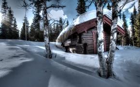 Обои зима, снег, домик, деревья, рога
