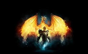Обои дракон, воин, dragon, devinity 2