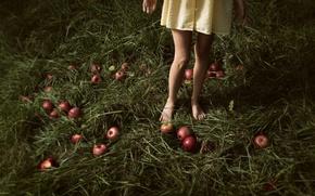 Картинка трава, яблоки, девочка