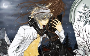Картинка снег, ночь, ветер, луна, объятия, плита, vampire knight, yuuki cross, kiryu zero, рыцарь-вампир