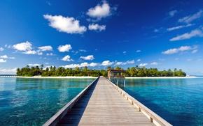 Картинка мост, пальмы, океан, остров