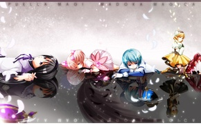 Картинка грусть, отражение, девушки, аниме, лепестки, арт, mahou shoujo madoka magica, akemi homura, kaname madoka, miki …