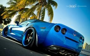 Обои синий, пальма, машина