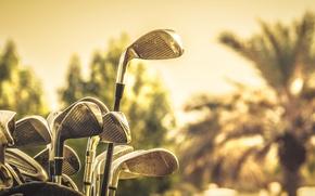 Картинка макро, спорт, Golf sticks